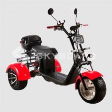 Электроскутер CityCoco SkyBoard Trike BR60-3000 PRO FAST
