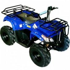 Электроквадроцикл ATV 218